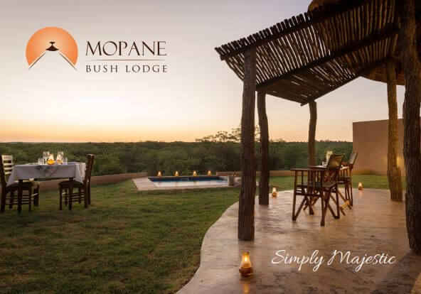 Safari Lodge in Limpopo