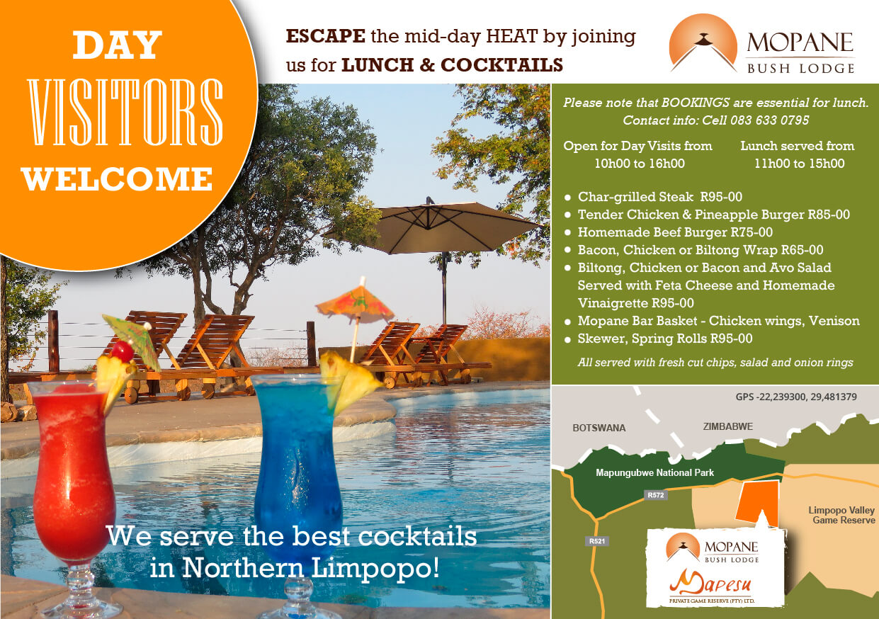 mopane advert-summerspecial-aug-2017-Print-02