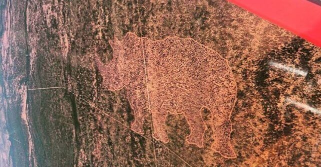"""Sky Rhino"" – Possibly the world's largest rhino geoglyph"