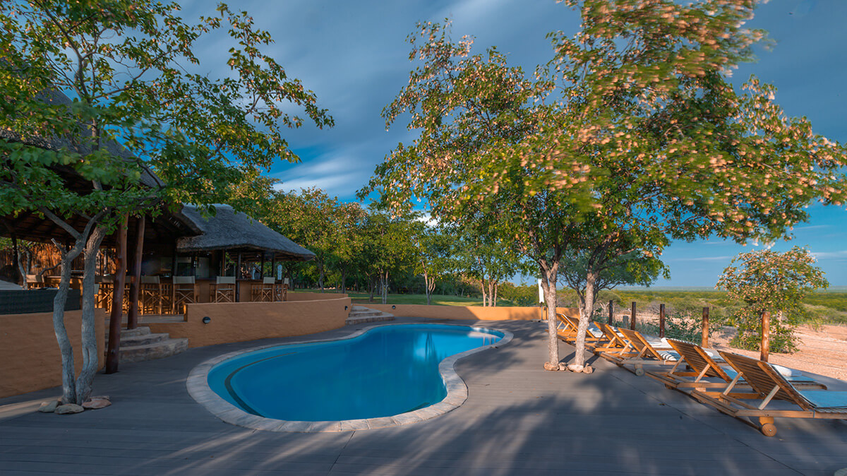 mopane_bush_lodge_bar_pool