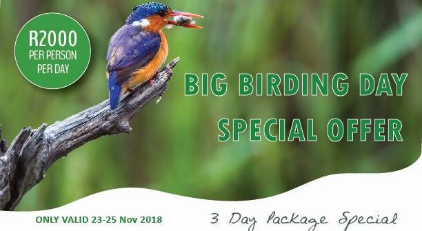 Special offer for the Big Birding Day
