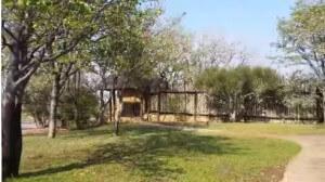 Safari Lodge in South Africa | Safari in Limpopo | Mopane Bush Lodge