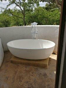 Safari lodge in south africa | Mopane Bush Lodge