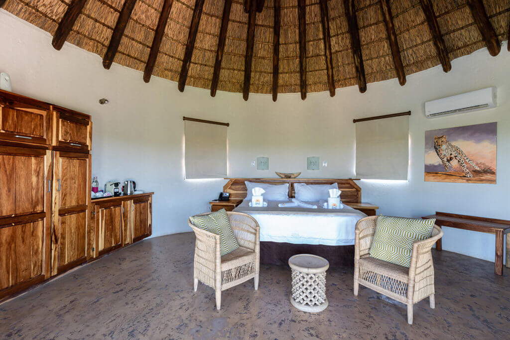 Safari lodge in south africa | Mopane Bush Lodge