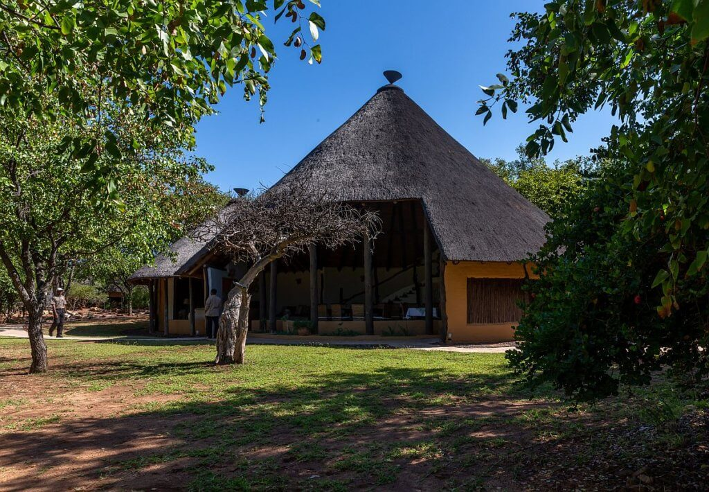 Safari lodges in south africa | Mopane Bush Lodge
