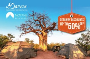 camping in south africa, musina, limpopo