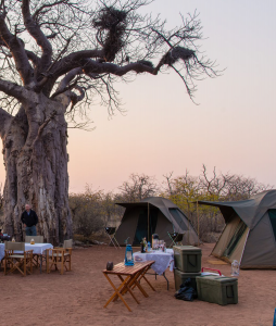 camping in south africa | mopane bush lodge