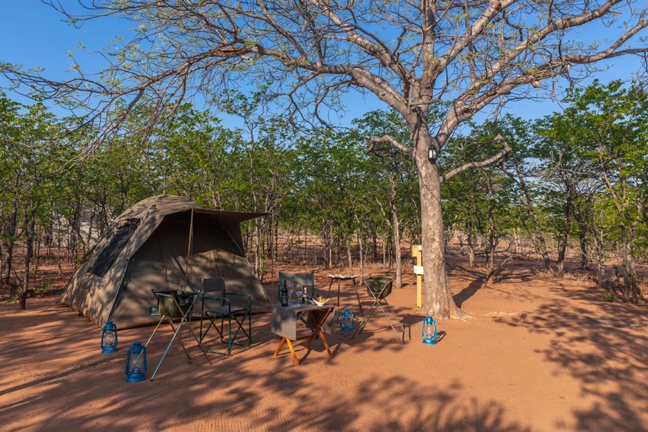 campsites in south africa | Mopane Bush Lodge