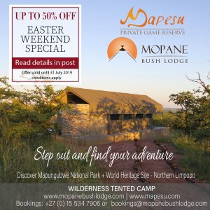 Safari Lodges in South Africa   Game Lodges in South Africa   Limpopo Lodges